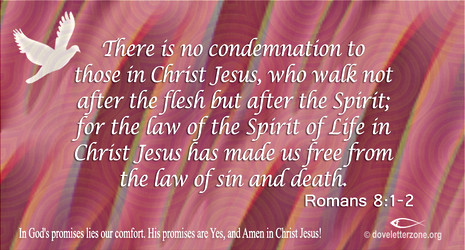 Condemnation | Walk in Freedom