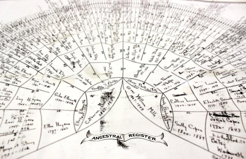 genealogy-fan-tree_edited.jpg