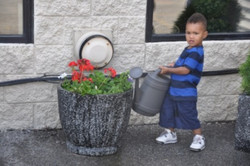 SENSES Gardening Initiative 2.jpg