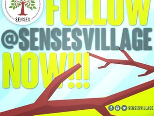 Follow S.E.N.S.E.S. Foundation now!