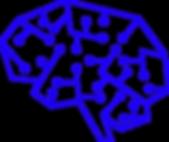 Brain Builders: Biology