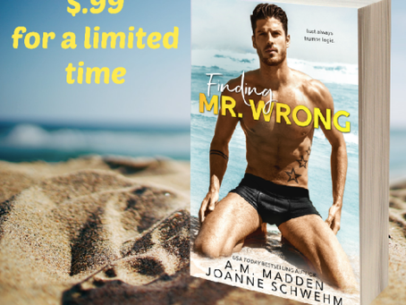Book Blast: Finding Mr. Wrong
