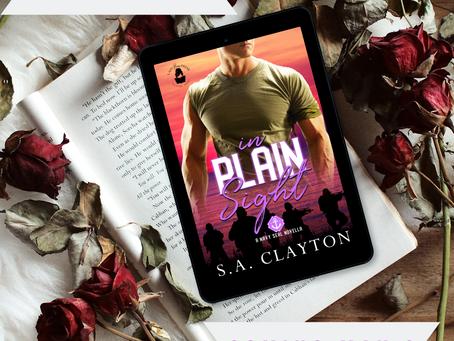 Book Blast: In Plain Sight