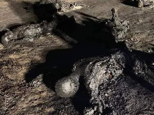 Accidente en Tlahuelilpan Hidalgo.