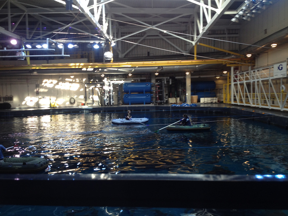 Behind the scenes tour of the Whale Shark area