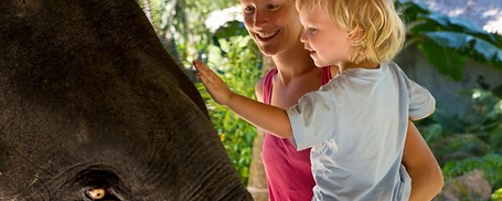 Family tours with Britax childseat in phuket with kids kids-on-board.se kids-on-board.com