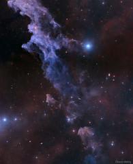 NASA APOD Witchead Nebula
