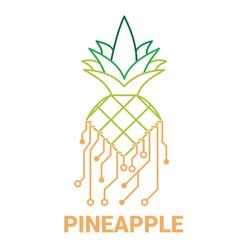 pineapple ag