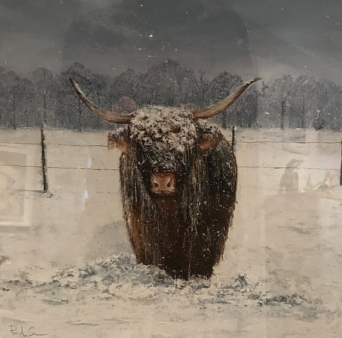 Heilan Coo Two!