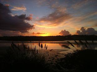 The Hayle Estuary, a RSPB reserve, Lelant below Riverside House