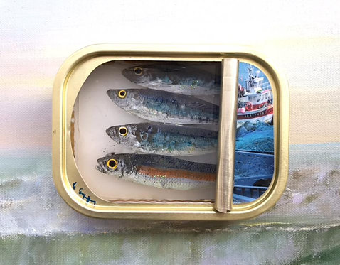 Small, 4 Blue with Trawler Tin