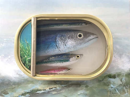 Fish Artwork No 27