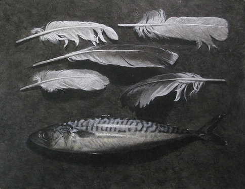 Mackerel and Feathers