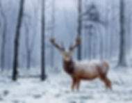 a painting of a stag in a winter forest with snow