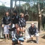 Perù – reinserimento condor