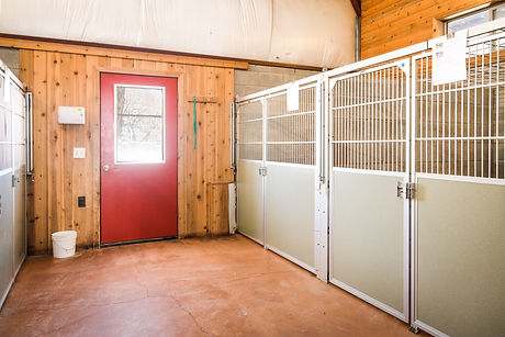 Thorn Creek Kennel