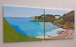Seal Bay (Brixham from Churston Cove