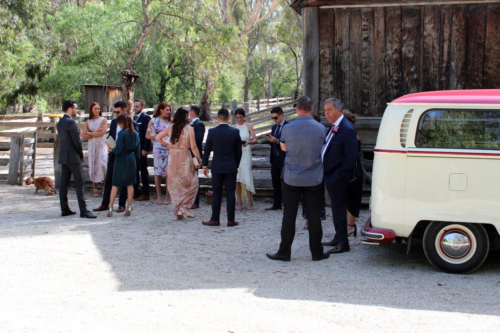 Kombi & Beetle Wedding Car Hire by Fisch & Co. - Emily & Michael (12)