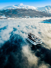 Fjord and Wildlife Cruise