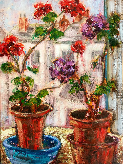 Geraniums in the Gallery