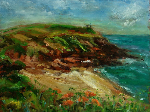 Poppies above Porthcurnick