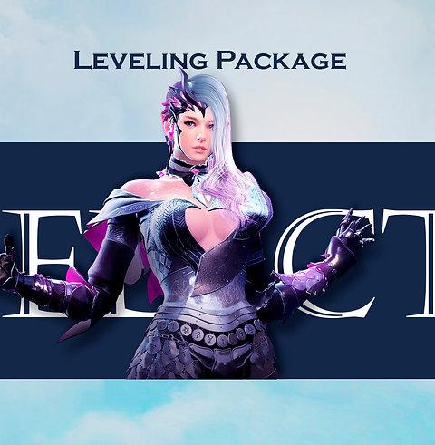 Leveling Package - EU/NA/SEA/SA