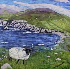 Sheep on Achill