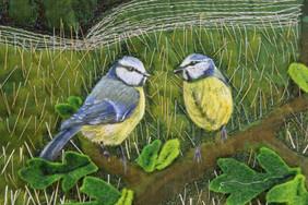Engagement birds detail