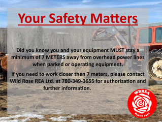 Your Safety Matters