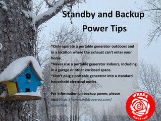 Standby and Backup Power Tips