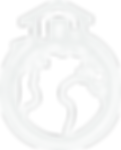 logo inmigra blanco.png