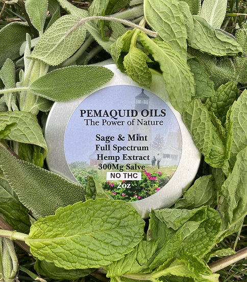 Sage & Mint Hemp Extract Salve (300mg) - No THC