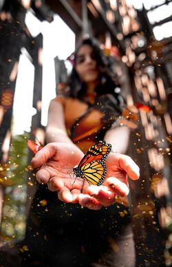 Noritah Butterfly