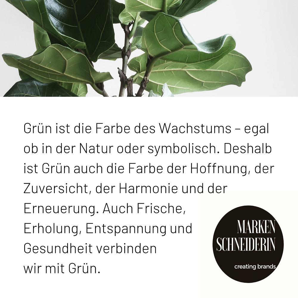 grüne Blätter Natur Leben