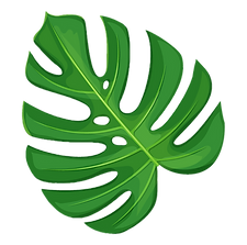Palm Leafs.png 1.png