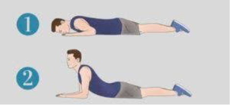 stomach prop back exercise