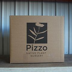 Large Box.JPG