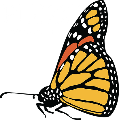 Full Color Pizzo and Associates Logo Whi