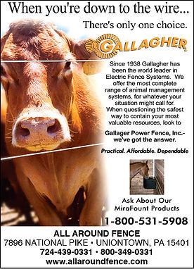 allaroundGallagher banner21.jpg