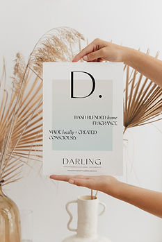 Darling Collateral 2.jpg