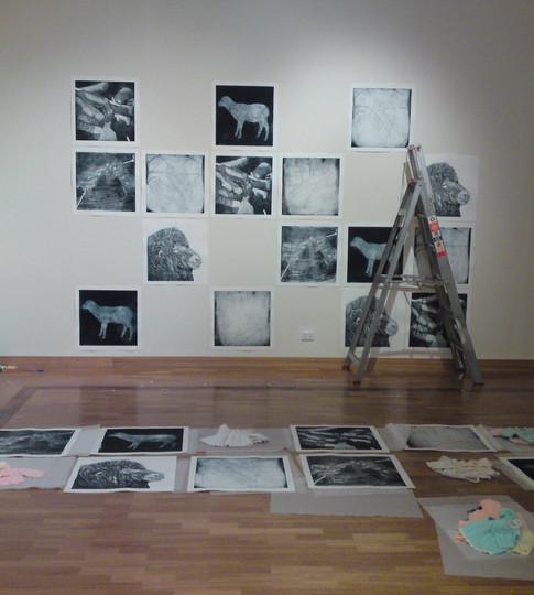 Installing at Gosford Art Gallery