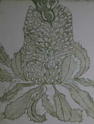 Etching by Indra Dreamer