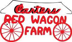 red wagon.png