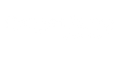 Carpet store logo.png