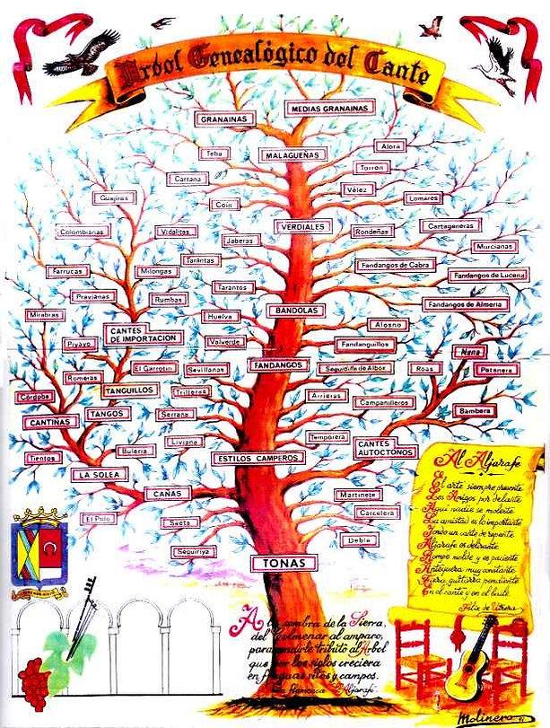Flamenco_Tree.jpg