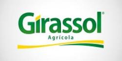 girassol.jpg