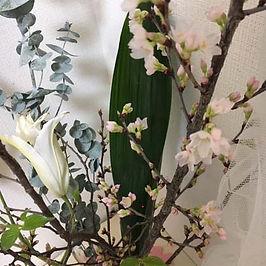 418桜.jpg