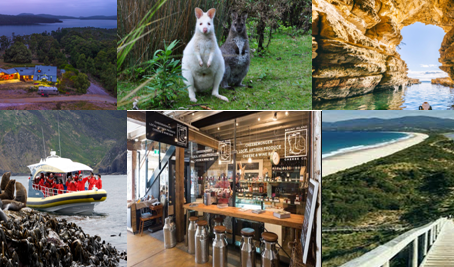 Bruny Island Wilderness Tour 2019 Confirmed - still room for a few more