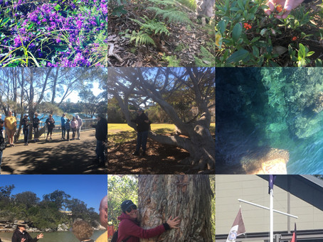 So Much Aboriginal Heritage on our Doorstep