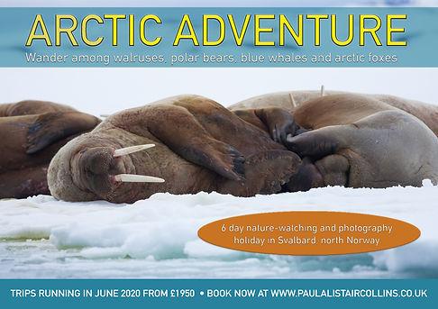 Arctic Adventure 2020 flyer 1.jpg